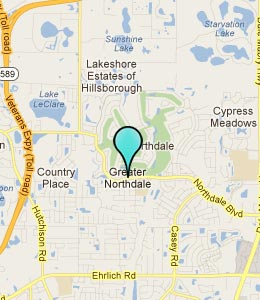 Hotels Amp Motels Near Northdale Fl See All Discounts